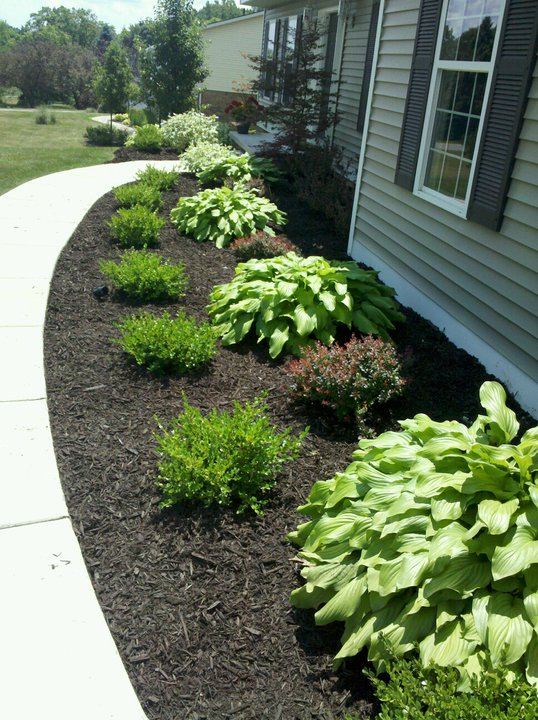 Black Edging For Mulch Beds